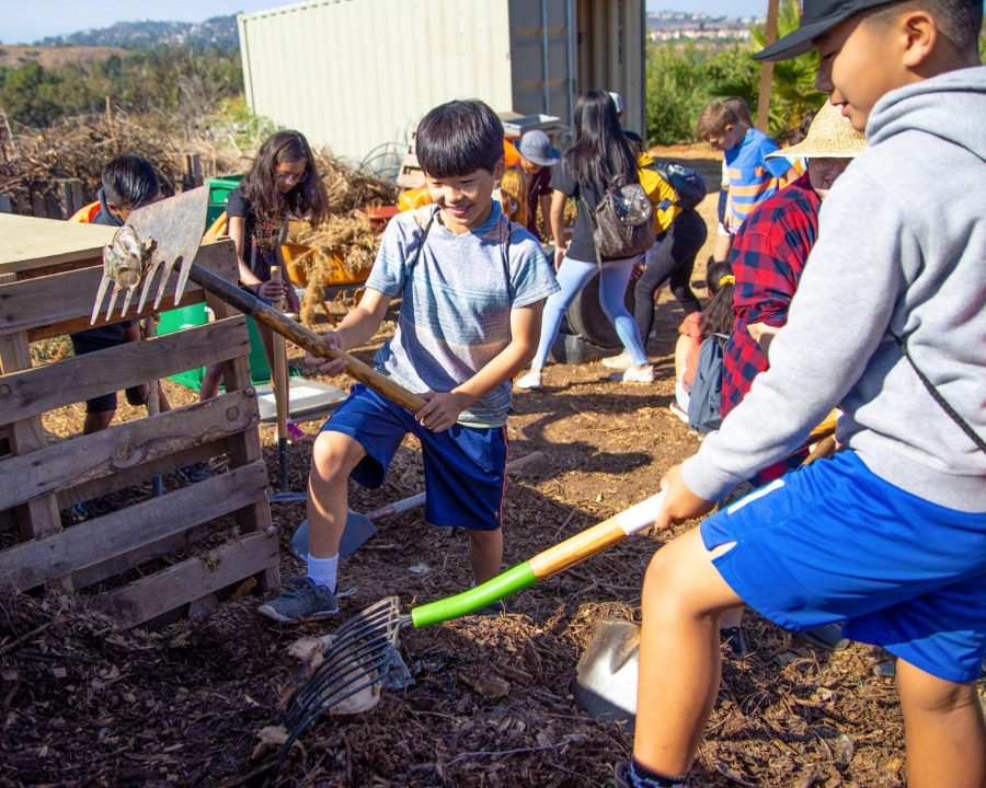 Boys gardening together and giving back to the community