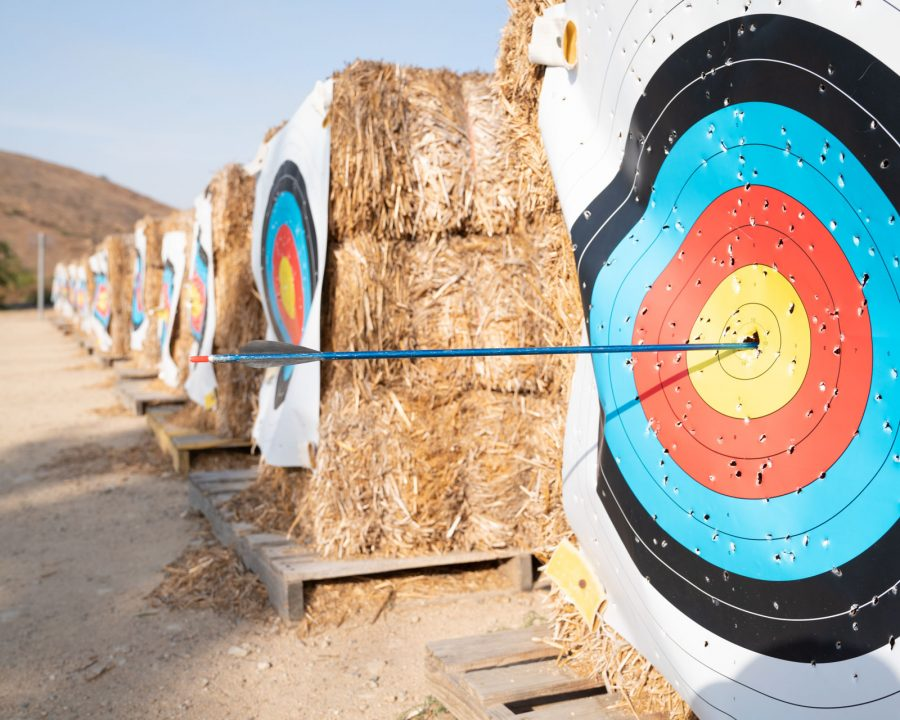 Arrows in archery targets