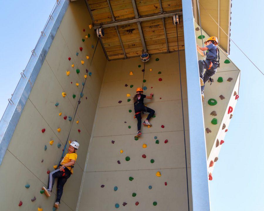 Kids on the climbing wall
