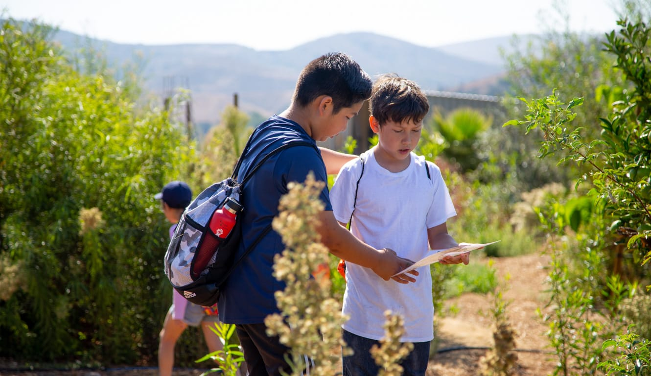 Two boys looking at a info sheet outside