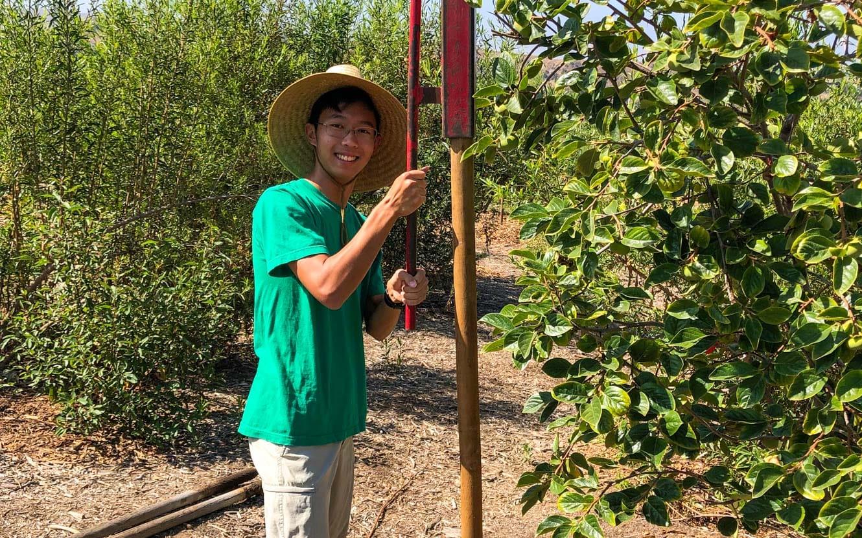 High School EcoCorps volunteer gardening